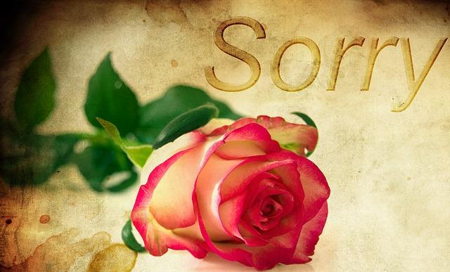 【言い過ぎた時の謝り方】職場や彼氏、彼女にもごめん