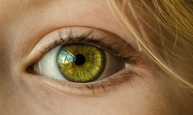 はっきりとした二重まぶたの瞳