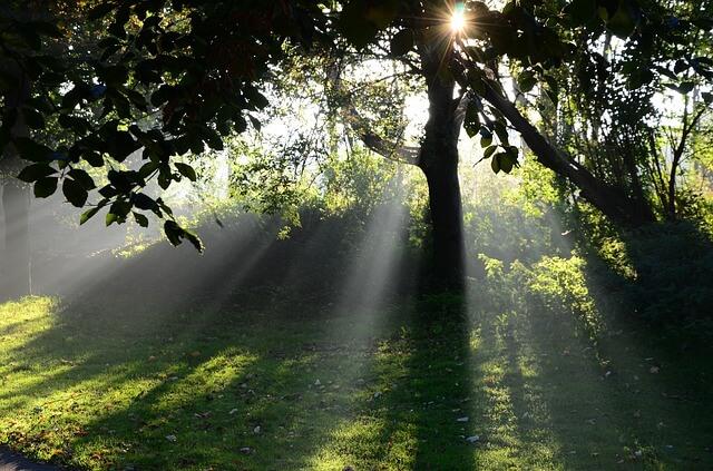 朝日がキレイな写真