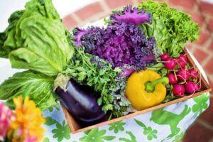 色鮮やかな野菜の写真
